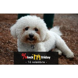Animax Black Friday 2018 - Ziua cu cele mai mari reduceri pentru animalutul tau