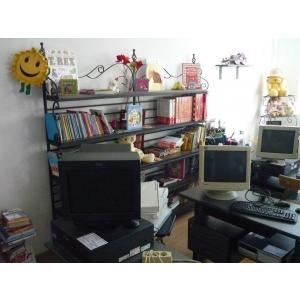 Centru IT pentru copiii si tinerii din apartamente de tip familial din Sectorul 4 initiat de Asociatia Young Initiative