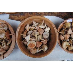 De Rusalii, targ si obiceiul Calusului, la Muzeul Taranului