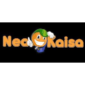 neakaisa. Avantajele achizitionarii online a materialelor de constructie