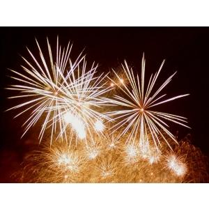 Hotel plaisir. Castigati o invitatie la petrecerea de Revelion 2012 la Restaurant Plaisir din Ploiesti