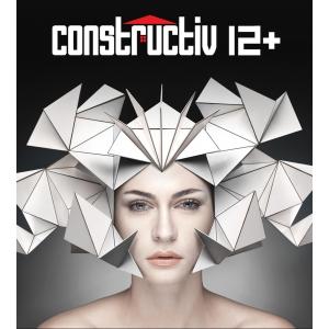 constructiv. Despre construcţii la CONSTRUCTIV 12+