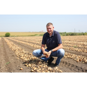 Carrefour susține producătorii români, de peste 14 ani