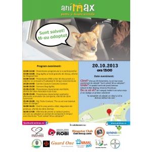 caini comunitari. Animax - cel mai mare lanţ de petshop-uri din România -  organizează un târg de adopţii şi donaţii pentru căţeii comunitari