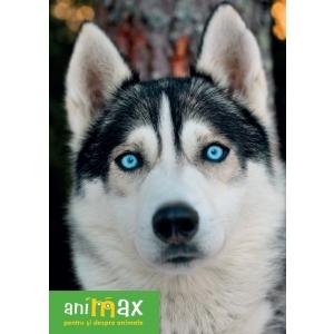 """Animax, cel mai mare lant de petshop-uri din Romania, lanseaza campania """"Back to school""""!"""