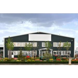 Parcul Industrial DIBO. Primavara olandeza in Parcul Industrial DIBO
