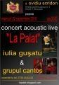 Concertele acoustic live `La Palat` debuteaza azi, 22 septembrie, ora 20:00