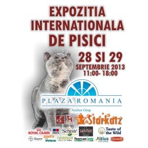 expozitie pisici bucuresti. Expozitia Internationala Felina Starkatz