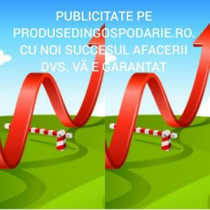 Cu publicitatea pe produsedingospodarie.ro afacerea dvs.are doar de castigat