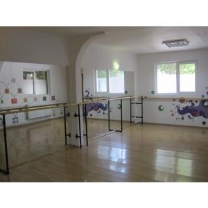 actorie copii. Studio Galapagos organizeaza cursuri de balet, actorie si pictura pentru copii
